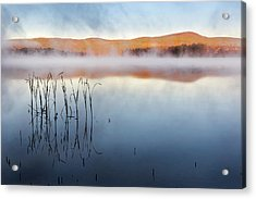 Autumn Fog Acrylic Print by Bill Wakeley
