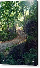 Autumn In The Smoky's Acrylic Print by Laurie Perry