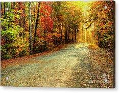 Autumns Path Acrylic Print by Darren Fisher