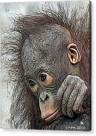 Bad Hair Day Acrylic Print by Larry Linton