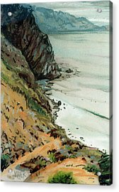 Big Sur California Acrylic Print by Donald Maier