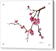 Cherry Blossoms 1d Acrylic Print by McKenzie Leopold
