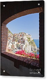 Cinque Terre Town Of Manarola Acrylic Print by Jeremy Woodhouse