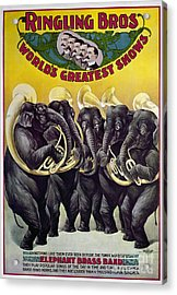 Circus Poster, C1899 Acrylic Print by Granger