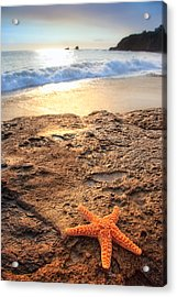 Crescent Bay Laguna Beach California Acrylic Print by Utah Images