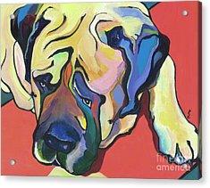 Diesel Acrylic Print by Pat Saunders-White