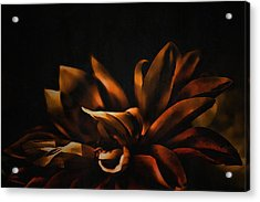 Elegance Acrylic Print by Bonnie Bruno