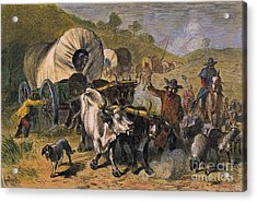 Emigrants To West, 19th C Acrylic Print by Granger