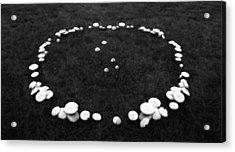 Fairy Ring Acrylic Print by Mark Wagoner