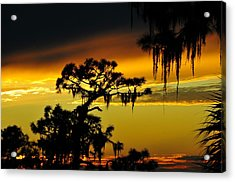 Central Florida Sunset Acrylic Print by David Lee Thompson