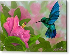 Flying Colors Acrylic Print by Leslie Rhoades