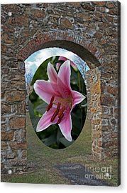 Framed In Stone Acrylic Print by Robert Sander
