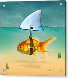 Gold Fish  Acrylic Print by Mark Ashkenazi