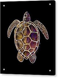 Honu Acrylic Print by Kirsten Carlson