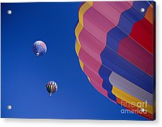 Hot Air Balloons Acrylic Print by Greg Vaughn - Printscapes