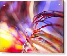 Insulated Electronic Wires Acrylic Print by Chris Knapton
