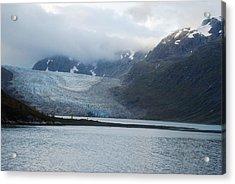 John Hopkins Glacier Acrylic Print by Michael Peychich