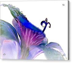 Life In Bloom Acrylic Print by Krissy Katsimbras