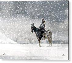 Longest Winter Acrylic Print by Paul Sachtleben