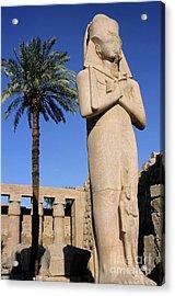 Majestic Statue Of Ramses II At Karnak Temple Acrylic Print by Sami Sarkis