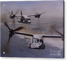 Ospreys Over The New River Inlet Acrylic Print by Stephen Roberson