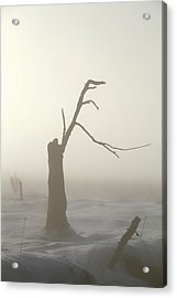 Post-war Winter Acrylic Print by Odd Jeppesen