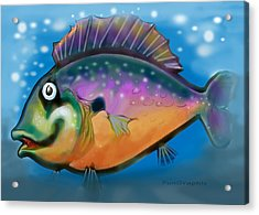 Rainbow Fish Acrylic Print by Kevin Middleton