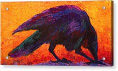Raven Acrylic Print by Marion Rose