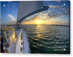 Sailing Sunset Charleston Sc Beneteau 49 Acrylic Print by Dustin K Ryan