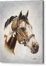 Show Off Acrylic Print by Cathy Cleveland