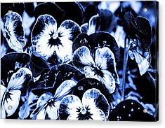 Spring Flowers  Acrylic Print by Toppart Sweden