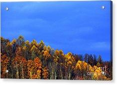 Stormy Sky Last Fall Color Acrylic Print by Thomas R Fletcher