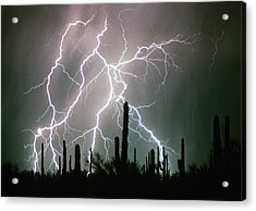 Striking Photography Acrylic Print by James BO  Insogna