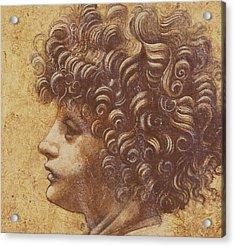 Study Of A Child's Head Acrylic Print by Leonardo Da Vinci