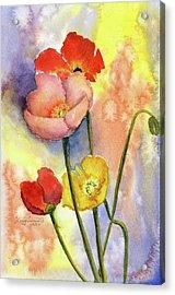 Summer Poppies Acrylic Print by Vickey Swenson