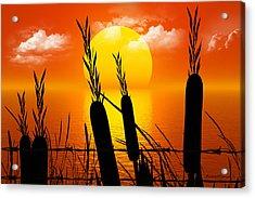 Sunset Lake Acrylic Print by Robert Orinski