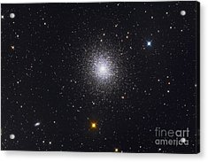 The Great Globular Cluster In Hercules Acrylic Print by Roth Ritter