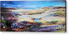 The Inlet Acrylic Print by Diane Ursin
