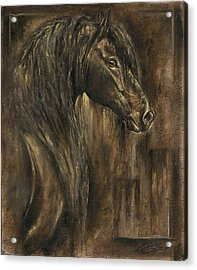 The Spirit Of A Horse Acrylic Print by Paula Collewijn -  The Art of Horses