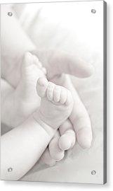 Tiny Feet Acrylic Print by Sebastian Musial