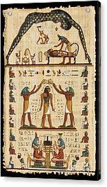 Twokupamun Papyrus Acrylic Print by Richard Deurer