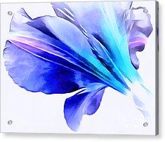 Unforgetable Acrylic Print by Krissy Katsimbras