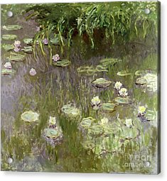 Waterlilies At Midday Acrylic Print by Claude Monet