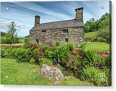 Welsh Cottage Acrylic Print by Adrian Evans