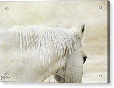 White On White Acrylic Print by Christine Hauber