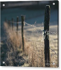 Wooden Posts Acrylic Print by Bernard Jaubert