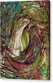 11-03-11 Acrylic Print by Gwyn Newcombe