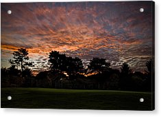 16 Green Dawn Acrylic Print by Edwin Voorhees