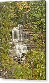Alger Falls Acrylic Print by Michael Peychich