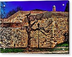 Belgrade Fortress Kalemegdan Acrylic Print by Milan Karadzic